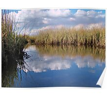 Sawgrass Water Sky and clouds 2 Poster