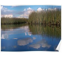 Sawgrass Water Sky and clouds 6 Poster