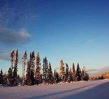 Winter Day by Lina Ottosson
