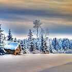 Winter scene by ilpo laurila