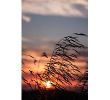 The Sunset Breeze Photographic Print