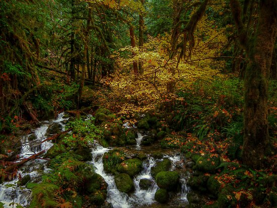 Just Bump Along by Charles & Patricia   Harkins ~ Picture Oregon