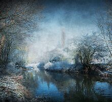 Winter Wonderland by Svetlana Sewell