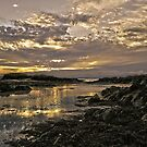 Skerries Sunset by Martina Fagan