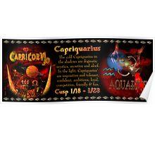 Valxart Capriquarius is Capricorn/Aquarius Cusp  Poster