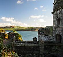 St Mawes Castle, Cornwall by Mark Baldwyn