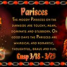 "The Pisces/Aries Cusp sometimes referred to as ""Paries"" is approximately from dates March 16 to March 26 and ruled by both Neptune and Mars with the elements of water and fire.  by Valxart"