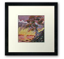 Cypress Sun Framed Print