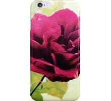 January Rose iPhone Case/Skin