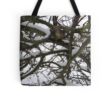 Through winter branches Tote Bag
