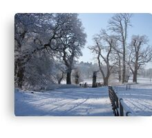 Dinefwr Castle in snow-01 Metal Print