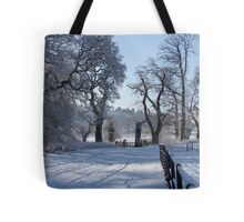 Dinefwr Castle in snow-01 Tote Bag