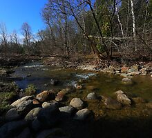 spring stream flowing over boulders through the forest by mssaar