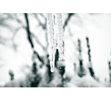 Icicle Drip Photographic Print