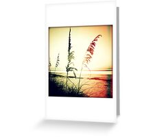 Before Day II Sunset Greeting Card