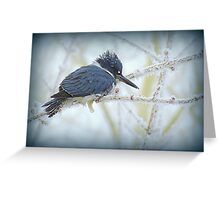Weathering The Weather...Blue Kingfisher Greeting Card