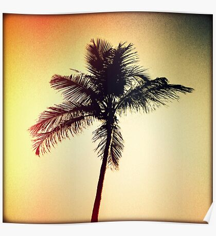 Palm Silhouette Sunset Poster