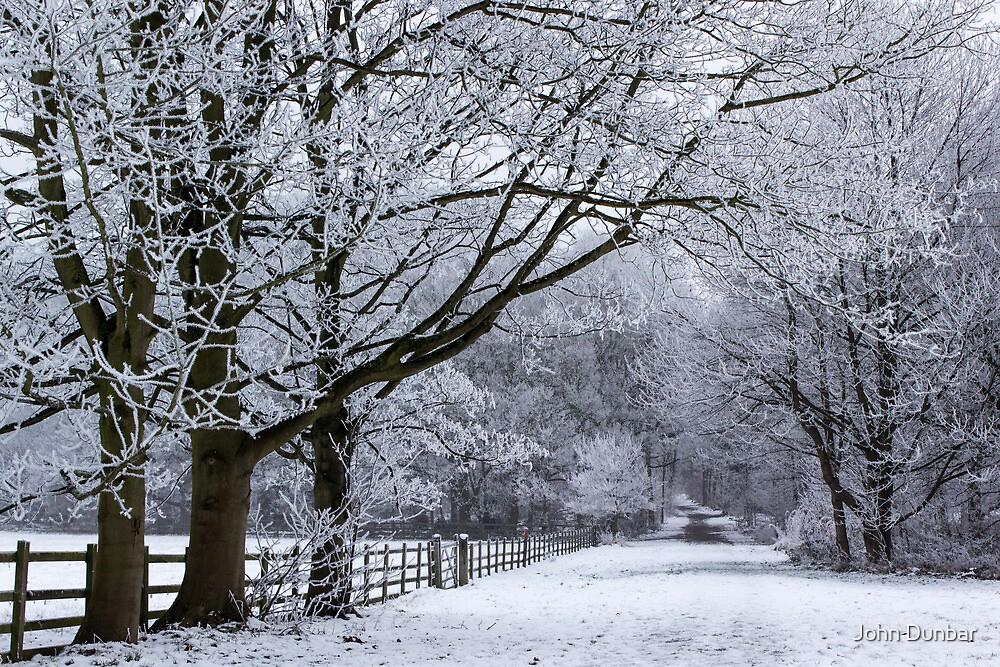A Winters Lane by John Dunbar
