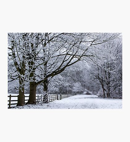 A Winters Lane Photographic Print