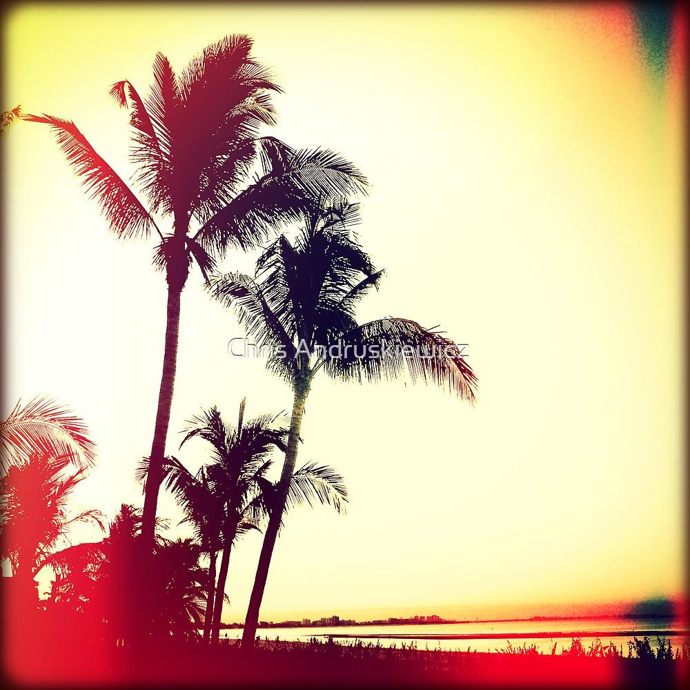 Palms at Dawn II Sunset by Chris Andruskiewicz
