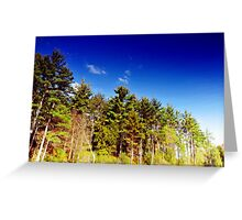Flip this Reflection!  Greeting Card
