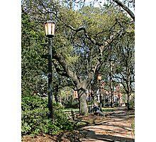 Savannah Square Photographic Print