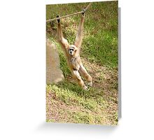 White Handed Gibbon Greeting Card