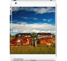 Brothers in Rust iPad Case/Skin