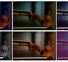 Musical Colors by Ashli Amabile