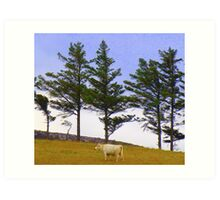 The Cow And The Lonesome Pines Art Print