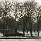 Ridley Park Blyth Northumberland With Snow by charliefoxtrott