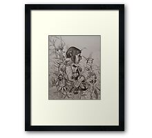 elf bard bored by the notes on the page Framed Print