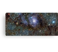 Milky Way outa Space Canvas Print