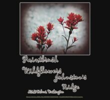 paintbrush wildflowers, Johnston's Ridge 3 Kids Clothes