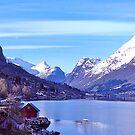 Norwegian Fjord, 1972. by johnrf