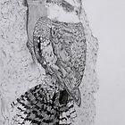 Laughing Kookaburra  by NatureLover81