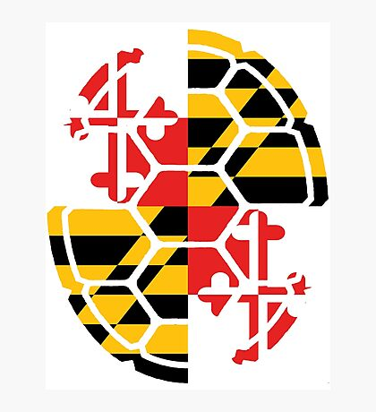 Maryland Flag Shell Photographic Print