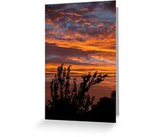 Fiery suburban sunset Greeting Card