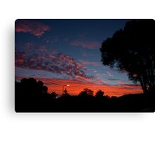 Suburban Summer time Canvas Print