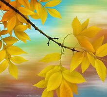 Fall Leaves by Shannon Posedenti