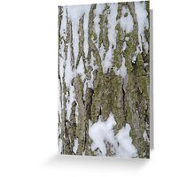 Snowy Bark Greeting Card