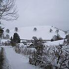 Snow Snow Snow  by Jacqueline Longhurst