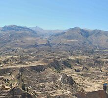 Colca Canyon by DAJPowell