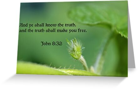 The truth shall make you free by aprilann