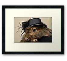 rabbit. Framed Print