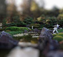 North Gosford Japanese Garden Tilt Shift 001 by wbgraphy