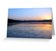 4 Ducks and a Sunset Greeting Card