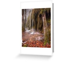 Plitvice waterfalls Greeting Card