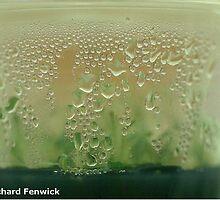 High humidity by RichardFenwick