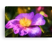 Purple Haze   (GO) Canvas Print